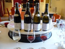 Tasting at Comte Senard estate